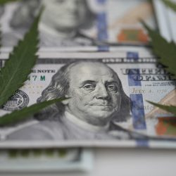 RMERCG cannabis business investment concept