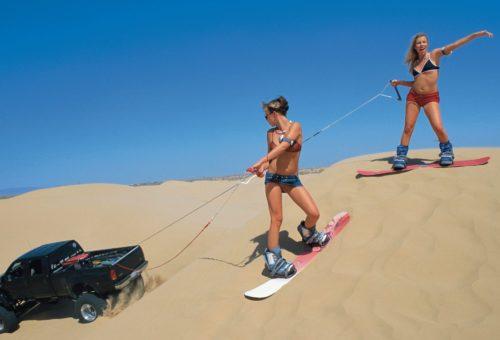 HUSTLER Classic: Dune Bunnies